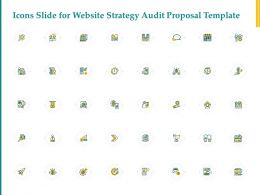 Icons Slide For Website Strategy Audit Proposal Template Ppt Powerpoint Topics