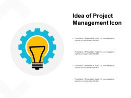 Idea Of Project Management Icon