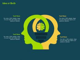 Idea Or Bulb Investment Banking Collection Ppt Rules