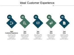 Ideal Customer Experience Ppt Powerpoint Presentation Summary Show Cpb