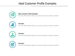 Ideal Customer Profile Examples Ppt Powerpoint Presentation Infographics Template Cpb