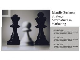 Identify Business Strategy Alternatives In Marketing