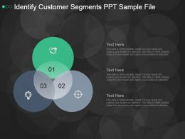 Identify Customer Segments Ppt Sample File