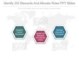 Identify Dg Stewards And Allocate Roles Ppt Slides