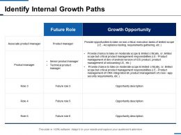 Identify Internal Growth Paths Future Role Ppt Inspiration Background Designs