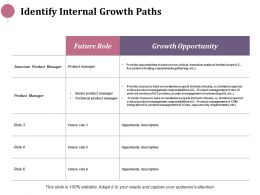 Identify Internal Growth Paths Ppt Infographics Design Inspiration