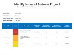 Identify Issues Of Business Project