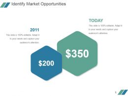 Identify Market Opportunities Powerpoint Slide Backgrounds
