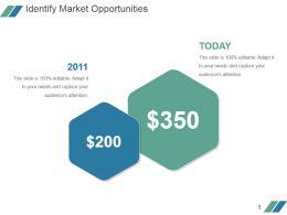 Identify Market Opportunities Powerpoint Slide Backgrounds