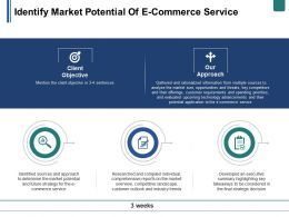 Identify Market Potential Of E Commerce Service Ppt Summary Grid