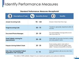 Identify Performance Measures Ppt Pictures Graphics Example