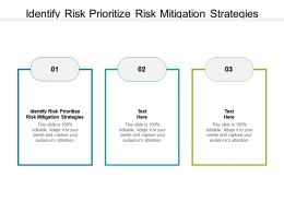 Identify Risk Prioritize Risk Mitigation Strategies Ppt Powerpoint Presentation Show Cpb