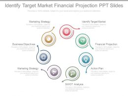 Identify Target Market Financial Projection Ppt Slides