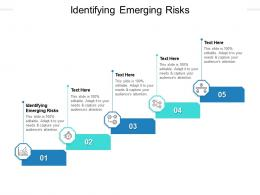 Identifying Emerging Risks Ppt Powerpoint Presentation Ideas Graphics Cpb