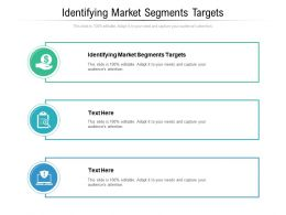Identifying Market Segments Targets Ppt Powerpoint Presentation File Brochure Cpb