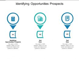 Identifying Opportunities Prospects Ppt Powerpoint Presentation Show Background Cpb