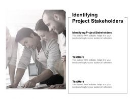 Identifying Project Stakeholders Ppt Powerpoint Presentation Infographic Template Picture Cpb