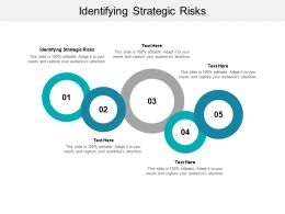 Identifying Strategic Risks Ppt Powerpoint Presentation Outline Slide Portrait Cpb