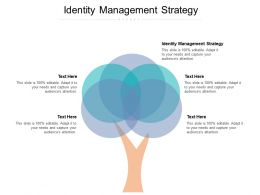 Identity Management Strategy Ppt Powerpoint Presentation Ideas Guide Cpb