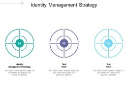 Identity Management Strategy Ppt Powerpoint Presentation Show Deck Cpb