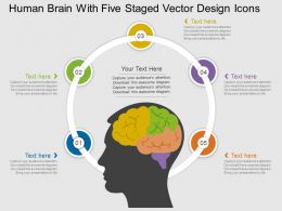 ie Human Brain With Five Staged Vector Design Icons Flat Powerpoint Design