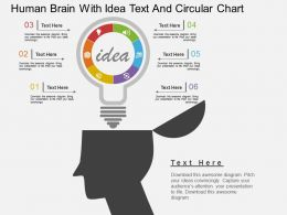 Ih Human Brain With Idea Text And Circular Chart Flat Powerpoint Design