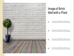 Image Of Brick Wall With A Plant