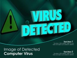 Image Of Detected Computer Virus