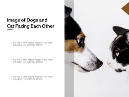Image Of Dogs And Cat Facing Each Other
