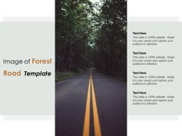 Image Of Forest Road Template