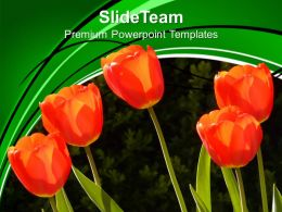 Image Of Red Tulips Powerpoint Templates Ppt Backgrounds For Slides 0213