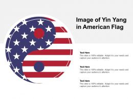 Image Of Yin Yang In American Flag