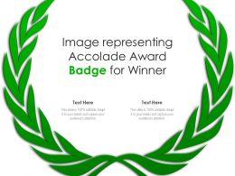 Image Representing Accolade Award Badge For Winner