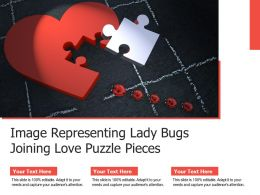 Image Representing Lady Bugs Joining Love Puzzle Pieces
