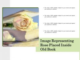 Image Representing Rose Placed Inside Old Book