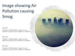 Image Showing Air Pollution Causing Smog