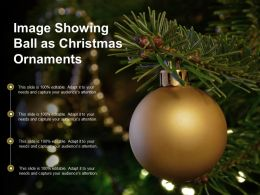 Image Showing Ball As Christmas Ornaments