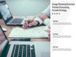 Image Showing Business Partner Discussing Growth Strategy