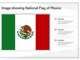 Image Showing National Flag Of Mexico