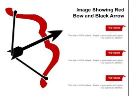 Image Showing Red Bow And Black Arrow