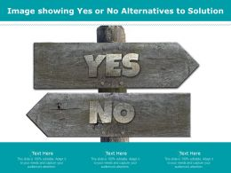 Image Showing Yes Or No Alternatives To Solution