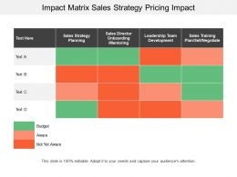 Impact Matrix Sales Strategy Pricing Impact