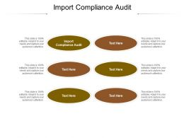 Import Compliance Audit Ppt Powerpoint Presentation Infographic Template Diagrams Cpb