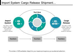 Import System Cargo Release Shipment Processing Entry Summary