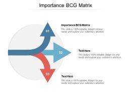 Importance BCG Matrix Ppt Powerpoint Presentation Pictures Shapes Cpb