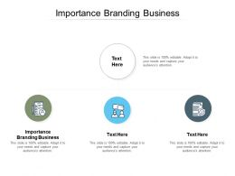 Importance Branding Business Ppt Powerpoint Presentation Styles Designs Cpb
