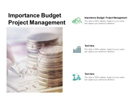 Importance Budget Project Management Ppt Powerpoint Presentation Portfolio File Formats Cpb
