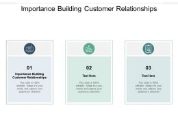 Importance Building Customer Relationships Ppt Powerpoint Presentation Professional Examples Cpb