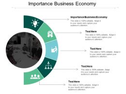 Importance Business Economy Ppt Powerpoint Presentation Slides Skills Cpb
