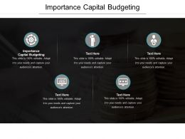 Importance Capital Budgeting Ppt Powerpoint Presentation Icon Example Introduction Cpb